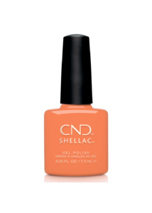 SHELLAC színek Catch of the Day - 7,3 ml